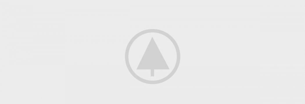 wood-portfolio-placeholder  - wood portfolio placeholder p0wwp74q9er9sjdqs0jikn868xd1j057488v6py3rk - Parallax Scrolling